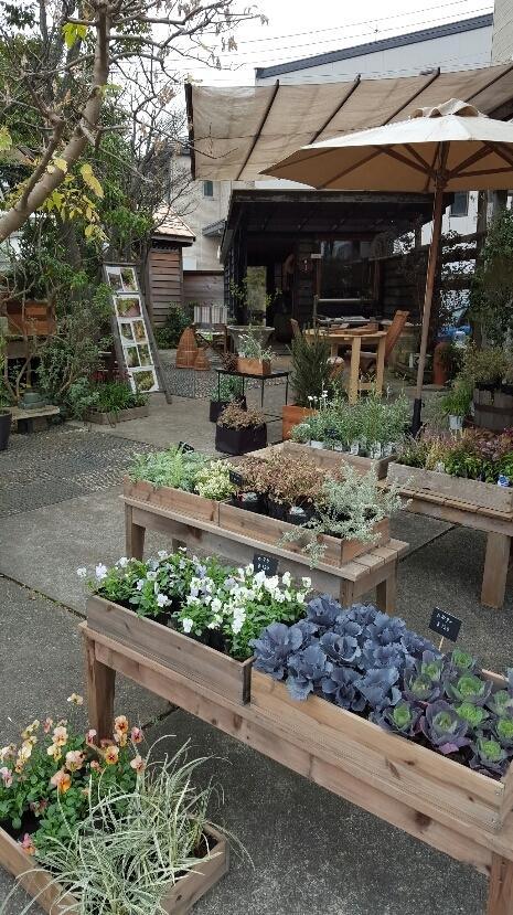 gardenmarket2015 (5)
