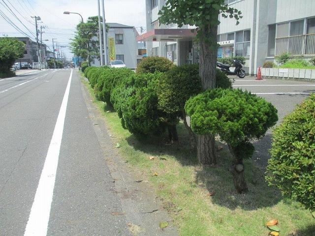 5事故現場_20161226