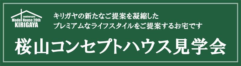 Microsoft PowerPoint - 20180624_完成見学会.pptx