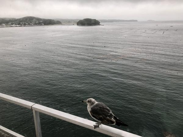 9 津波 島