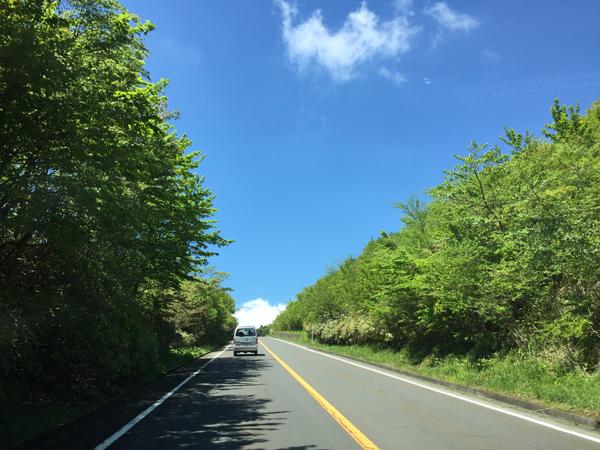 かながわ県産材森林ツアー04